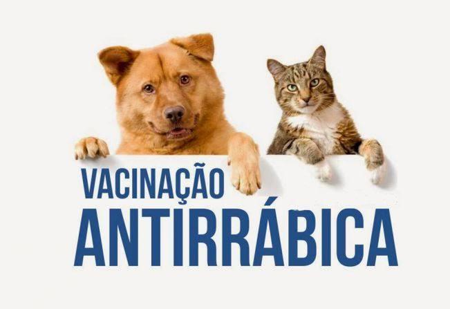 Secretaria Municipal de saúde publica cronograma de vacinação antirrábica