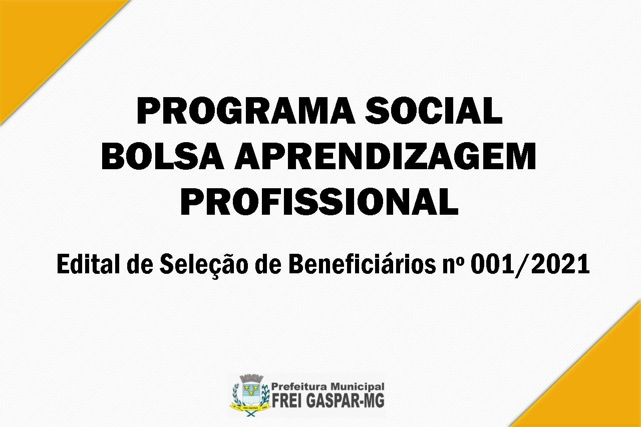 PROGRAMA SOCIAL BOLSA APRENDIZAGEM PROFISSIONAL